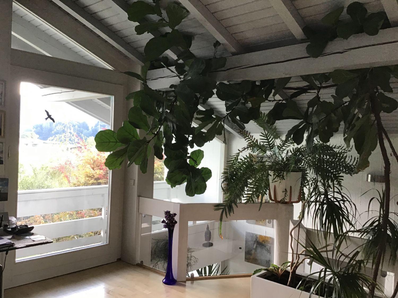 Ausblick von der Galerie im Obergeschoss