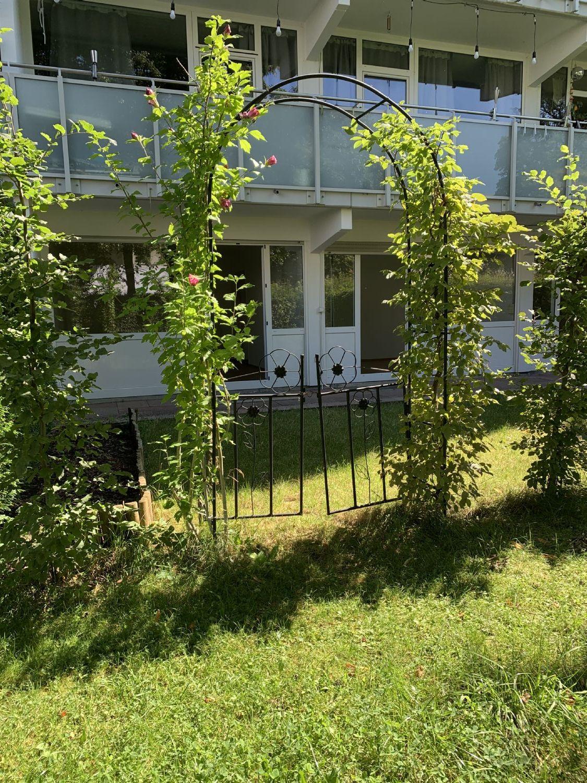 Gartengrundstück mit Blick auf die Terrassenwohnung